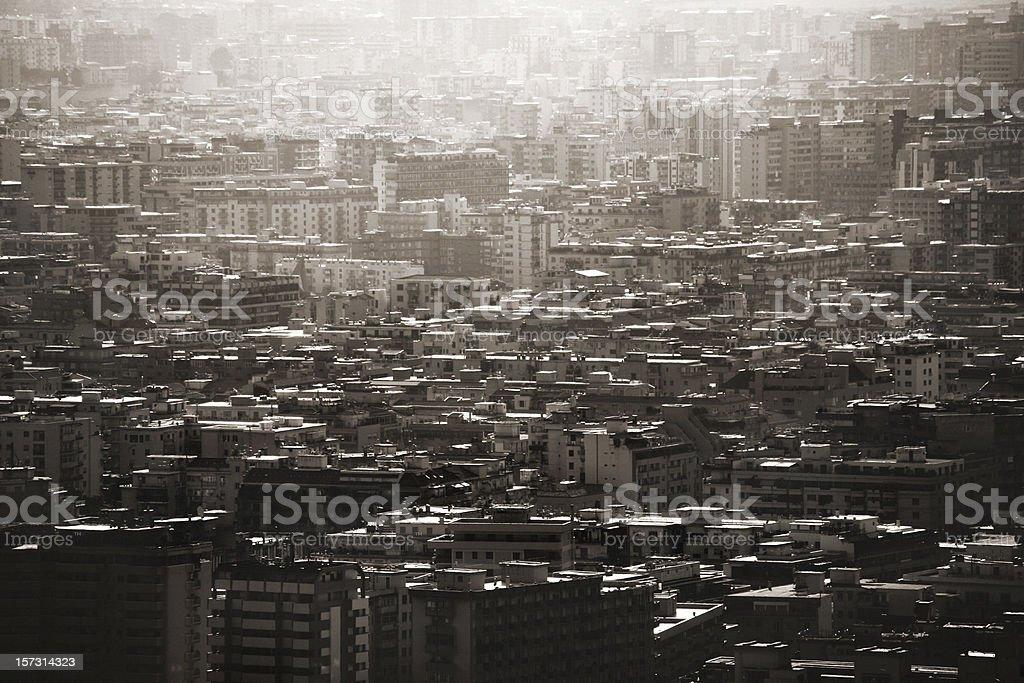 city jungle stock photo
