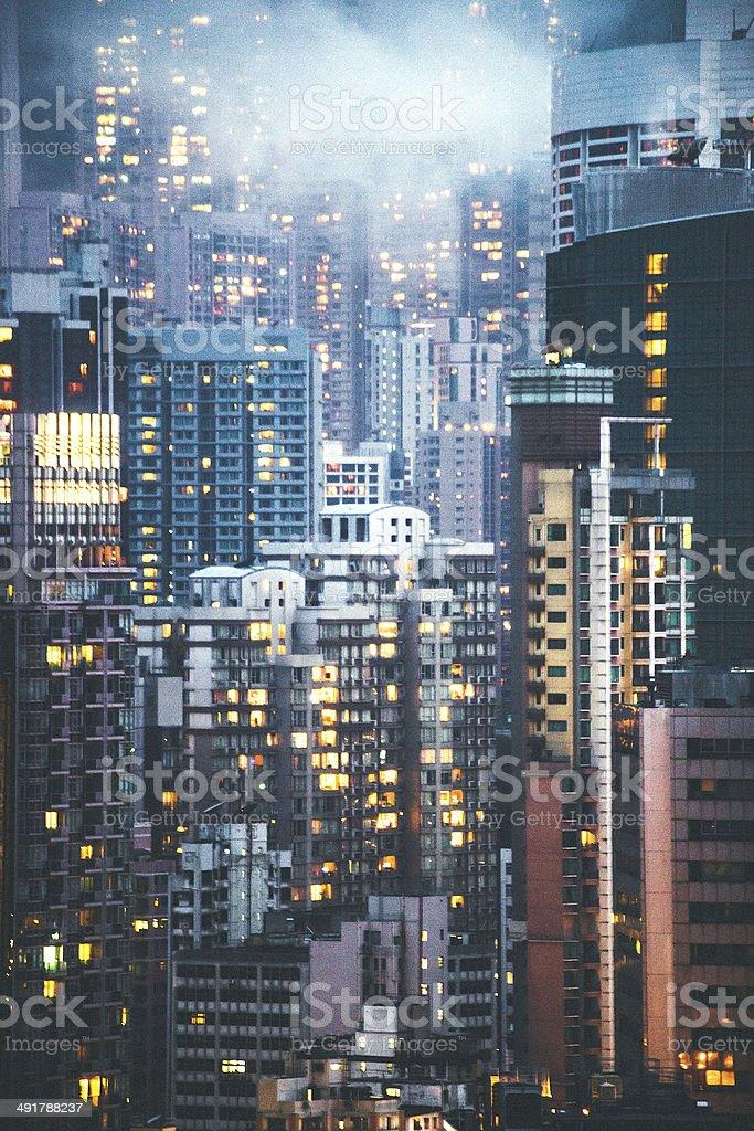 City-Dschungel. – Foto