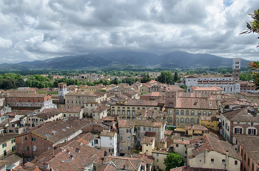 istock City of Lucca seen from the Torre Guinigi 693673368