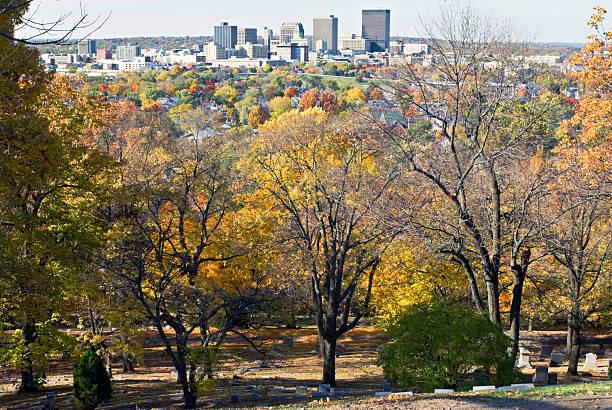 City on Tree Tops stock photo