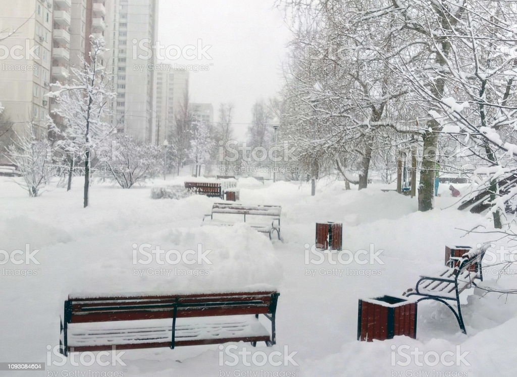 city park after snowfall at day stock photo