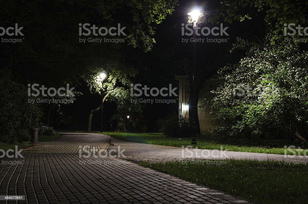 City park at night stock photo