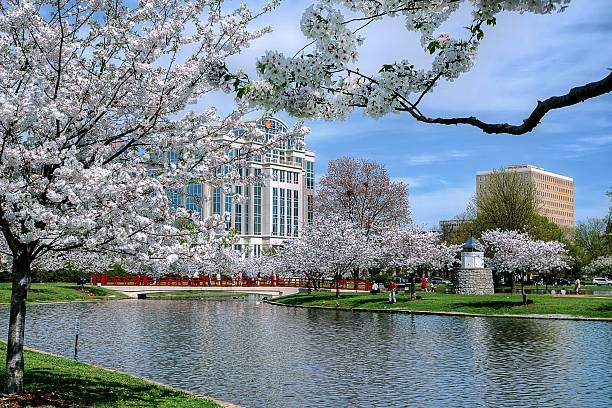 city park during spring - alabama stok fotoğraflar ve resimler