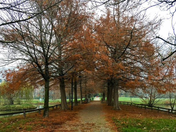 City Park in Brescia stock photo