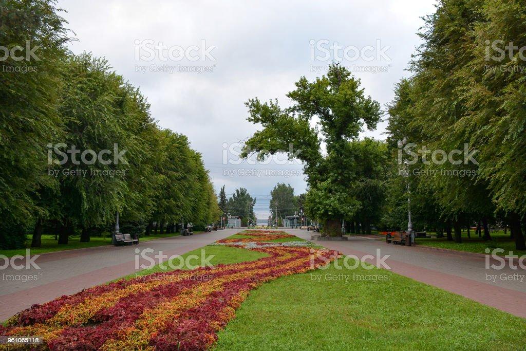 City Park in Volgograd city - Royalty-free Architecture Stock Photo