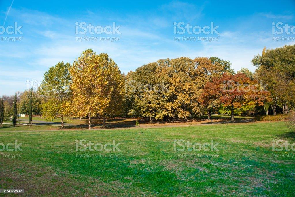 City Park Novi Sad in autumn colors stock photo
