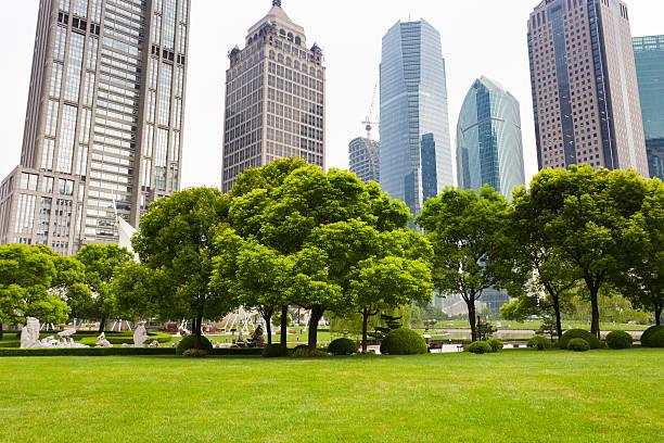 city park - vorgarten landschaftsbau stock-fotos und bilder