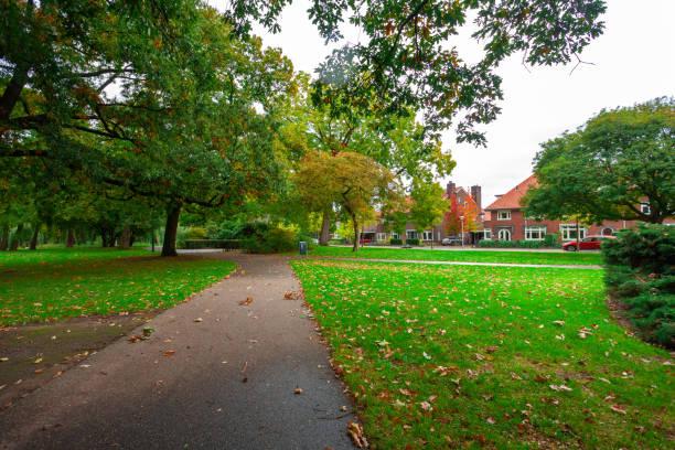 stadspark, bomen reflectie op het vijver water, herfst. eindhoven, netherlands. - eindhoven city stockfoto's en -beelden