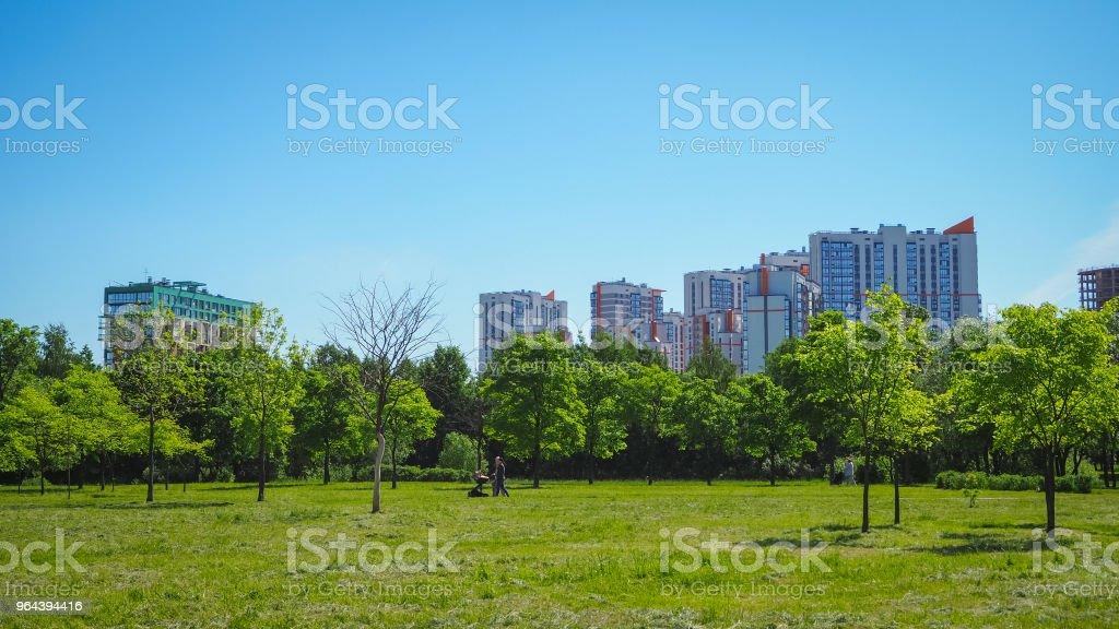 Stadspark onder blauwe hemel met centrum skyline op de achtergrond - Royalty-free Architectuur Stockfoto