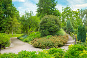 City park with beautiful trees, shrubs and a decorative staircase.