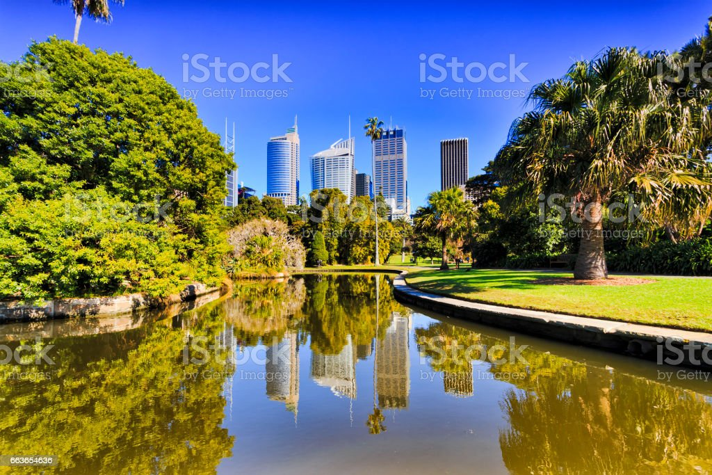 RBG City refl pond green day stock photo