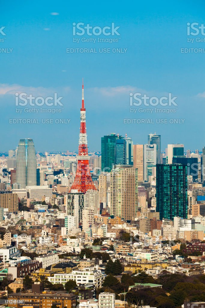 City Skyline with a view of the Tokyo tower stock photo