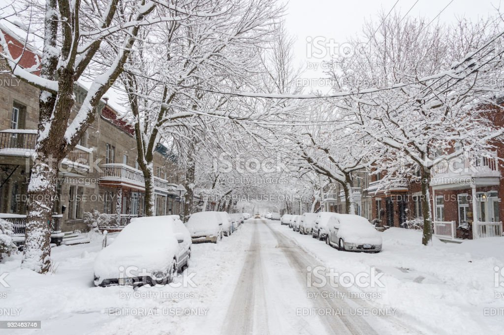 city street and cars covered in snow during winter storm