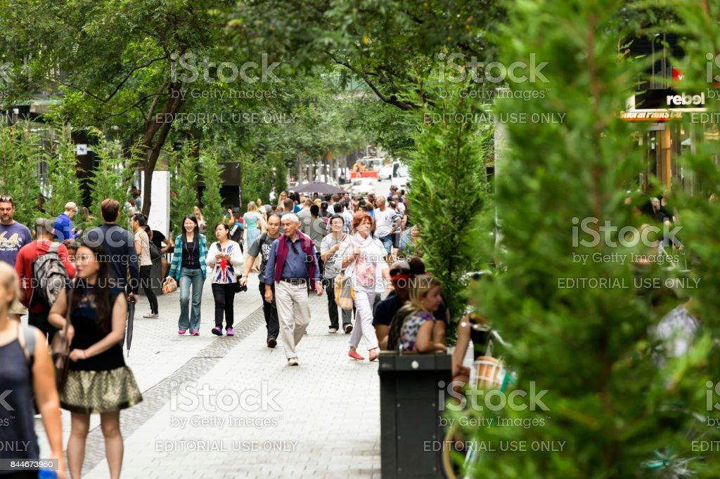 City street, Pitt Street Sydney Australia, copy space stock photo