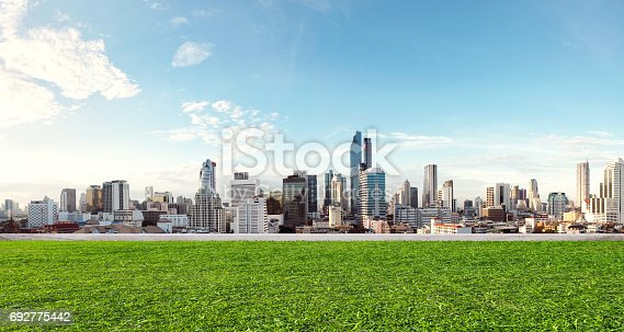 City view with grass lawn, eco-friendly building