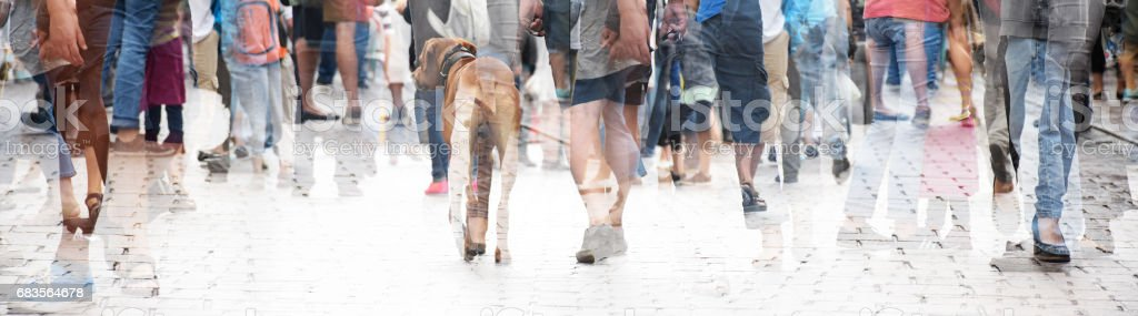 City walk, double exposure of a large crowd of people and a dog, abstract panorama bannerfor website header stock photo