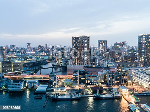 We can see the city of Tokyo and harbor.