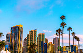 Cityscape Skyline Tropical Sunset Colors Downtown San Diego California Row of Palm trees at Blue Hour 2019