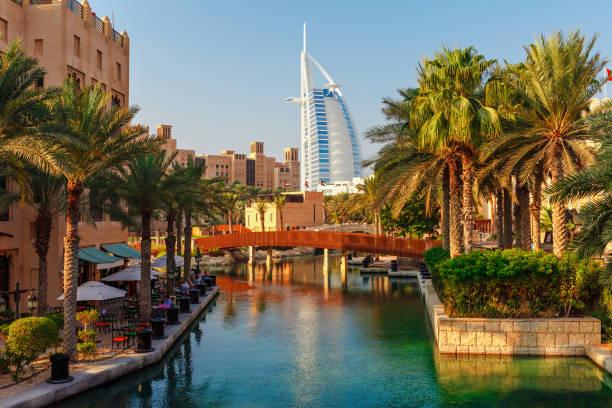 stadtbild mit schöner park mit palmen in dubai, vereinigte arabische emirate - dubai stock-fotos und bilder