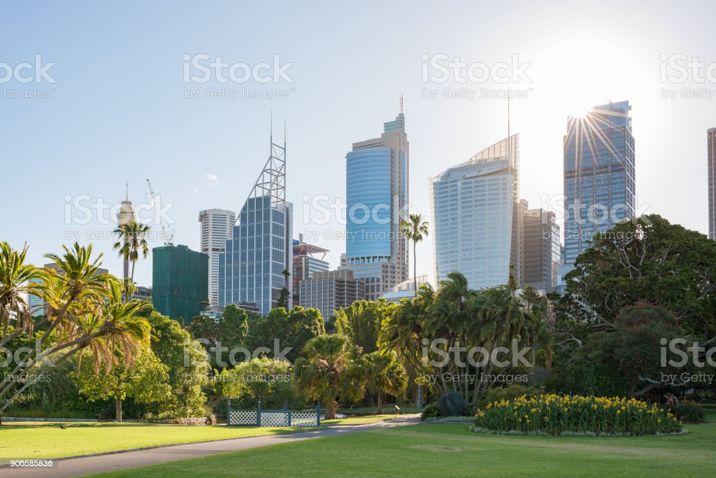 Cityscape with sun over the skyscraper and tropical park stock photo