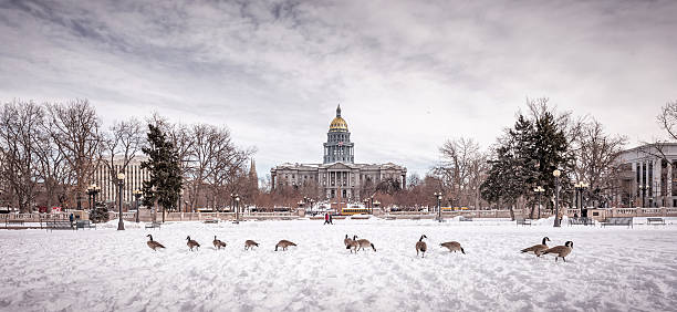 civic center park and colorado state capitol, denver - colorado state capitol stock photos and pictures