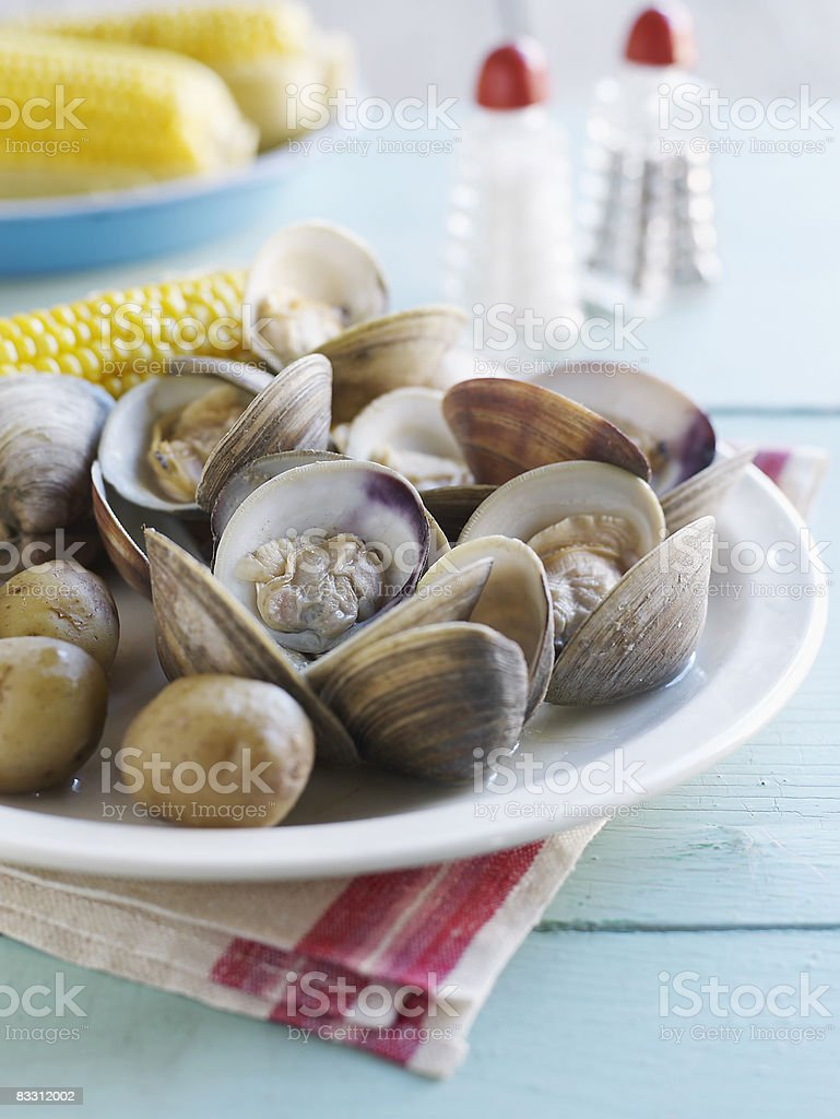 Clam Bake with corn on the cob royalty free stockfoto