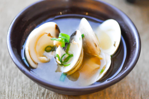 clam soup or shell soup - mięczak zdjęcia i obrazy z banku zdjęć