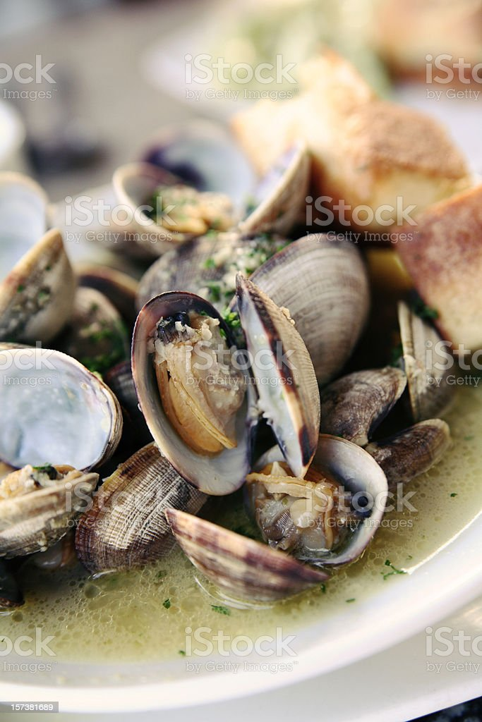 Clams at bistro bar stock photo