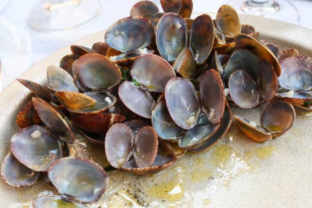clams à bulhão pato, traditional portuguese dish finished - ameijoas bulhão pato imagens e fotografias de stock