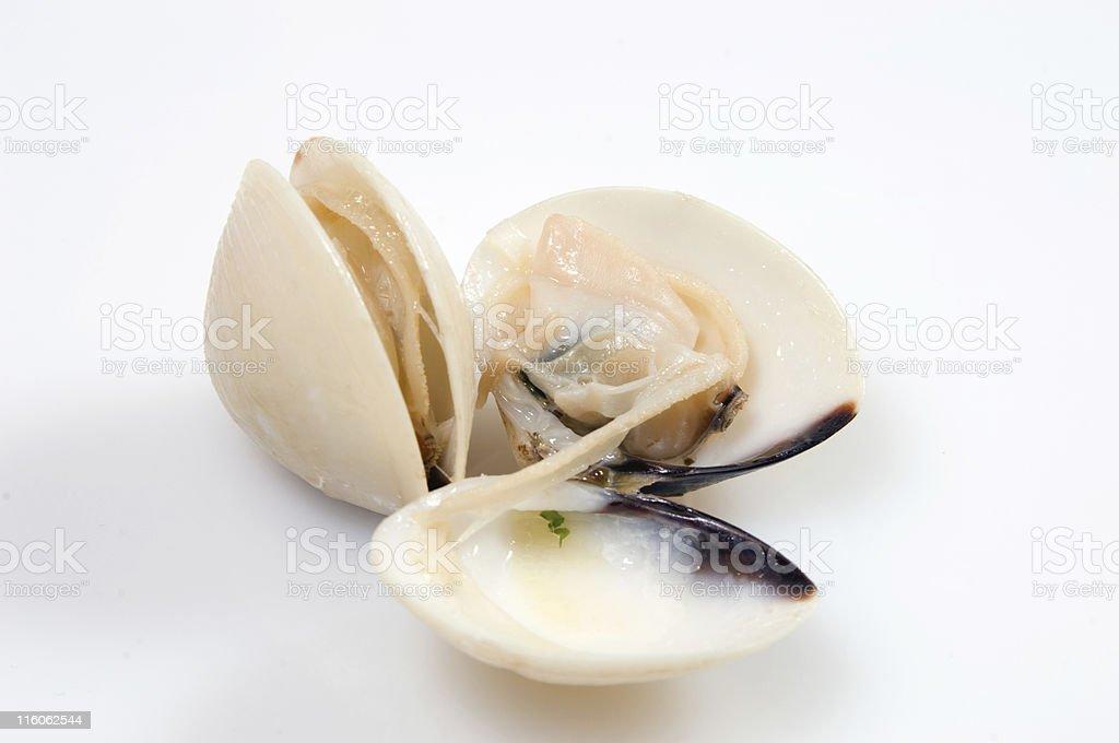 Almejas - foto de stock