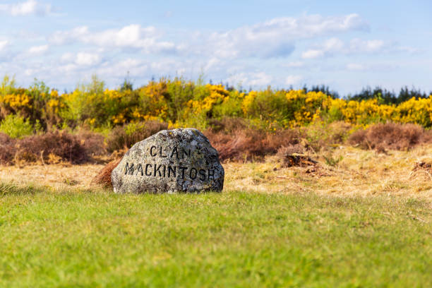 Clan stones at the Battlefield of Culloden Clan stones or grave stones at the Battlefield of Culloden near Inverness culloden stock pictures, royalty-free photos & images