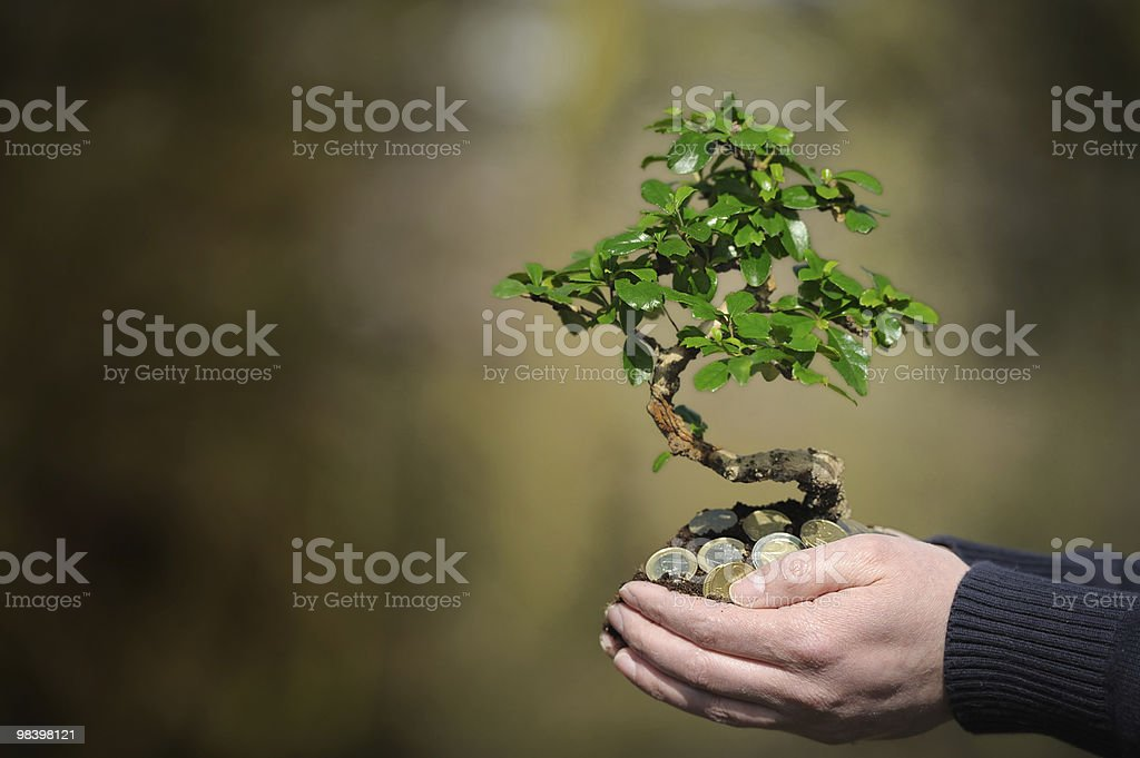 Clasped hands full of money with tree sprouting out of them royalty-free stock photo