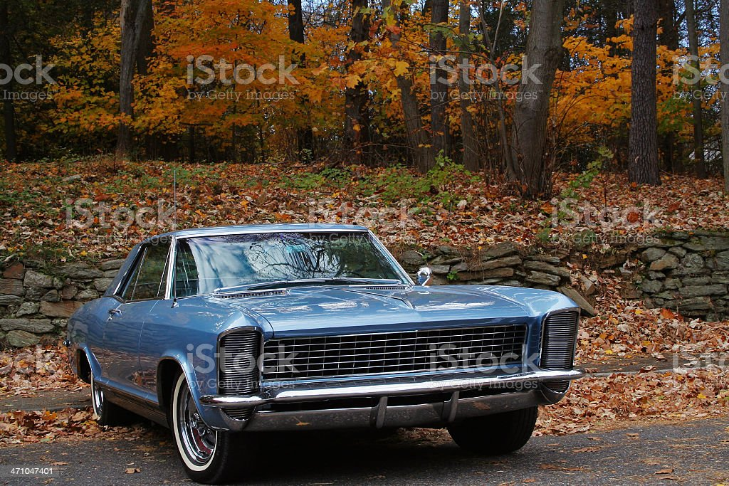 Classic American car in the autumn park stock photo
