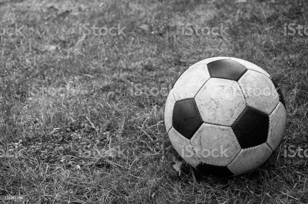 Classic ball in the backyard royalty-free stock photo