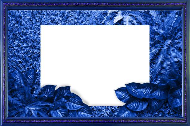 Klassische blaue Farbe Hintergrund von Blättern – Foto