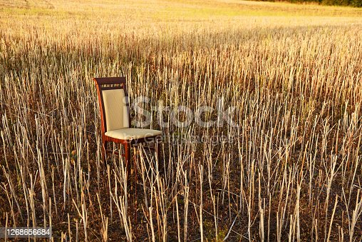 Classic chair in an empty field. On a sloping field, in the stubble, there is a classic wooden chair. Human expectations. Waiting for the new harvest.
