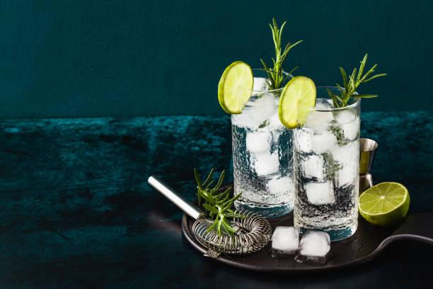 klassieke gin en tonic cocktail met rozemarijn takjes in hoge glazen op een tafel met bar accessoires - gin tonic stockfoto's en -beelden