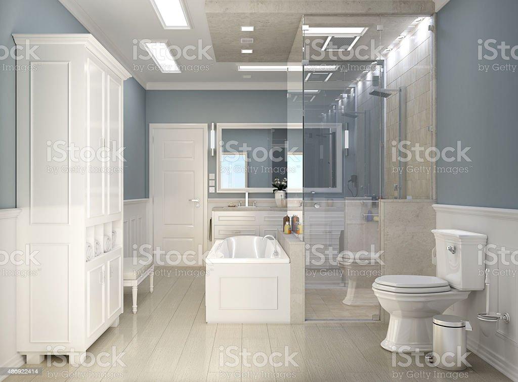 Klassisch Modernes Badezimmer Mit Wc Lizenzfreies Stock Foto
