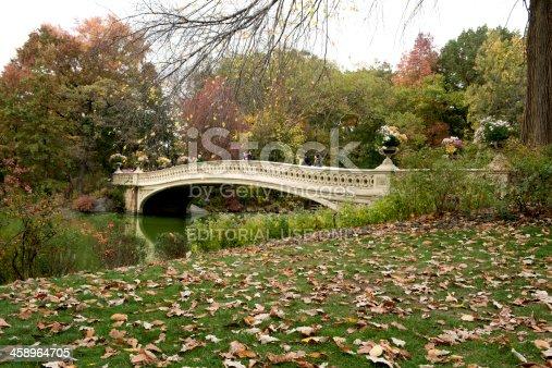 istock Classic NYC Architecure Landmark in Central Park Bow Bridge 458964705