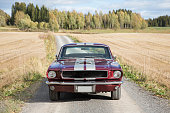 Muscle car in the countryside. Maroon and gray striped color.
