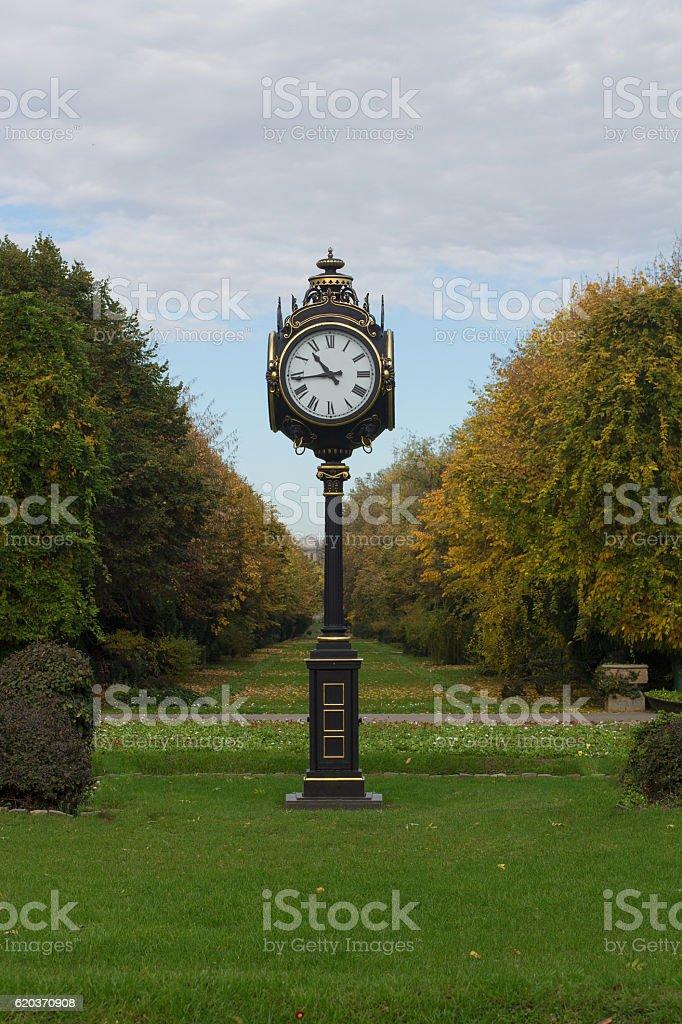 Classic outdoor clock in a green park zbiór zdjęć royalty-free