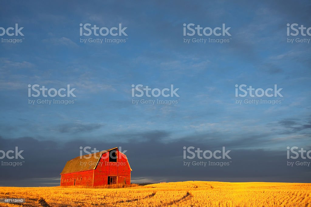 Classic Red Barn in the Midwest During Fall Harvest stock photo