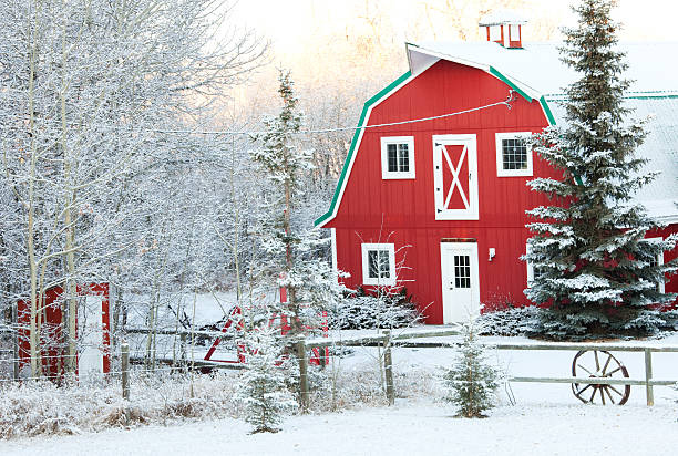 Classic Red Barn in Winter stock photo
