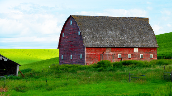 Palouse farm with green fields and red barn