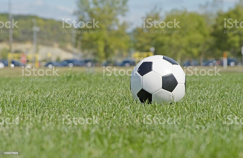 Classic soccer ball in the grass field royalty-free stock photo