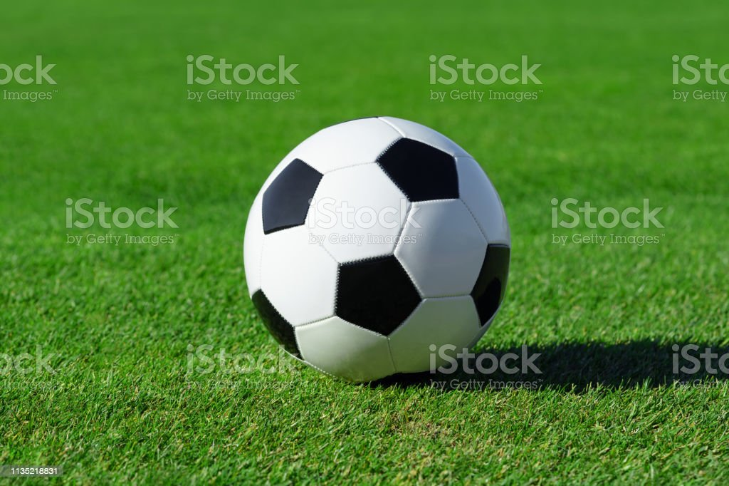 Classic soccer ball lies on the bright green grass on the football...