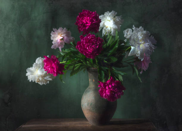 Classic still life with beautiful white and purple peony flowers bouquet in ancient jug. Art photography. Classic still life with beautiful white and purple peony flowers bouquet in ancient jug. Art photography. classical style stock pictures, royalty-free photos & images