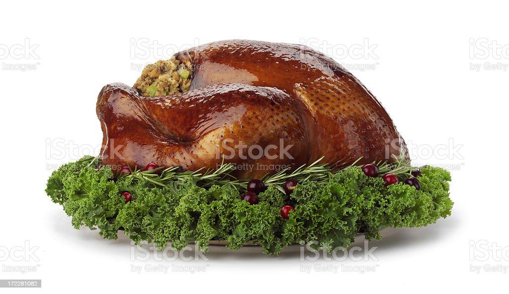 Classic Turkey royalty-free stock photo