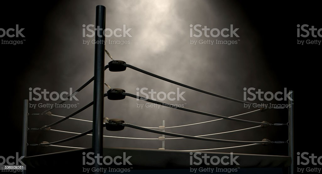 Classic Vintage Boxing Ring stock photo