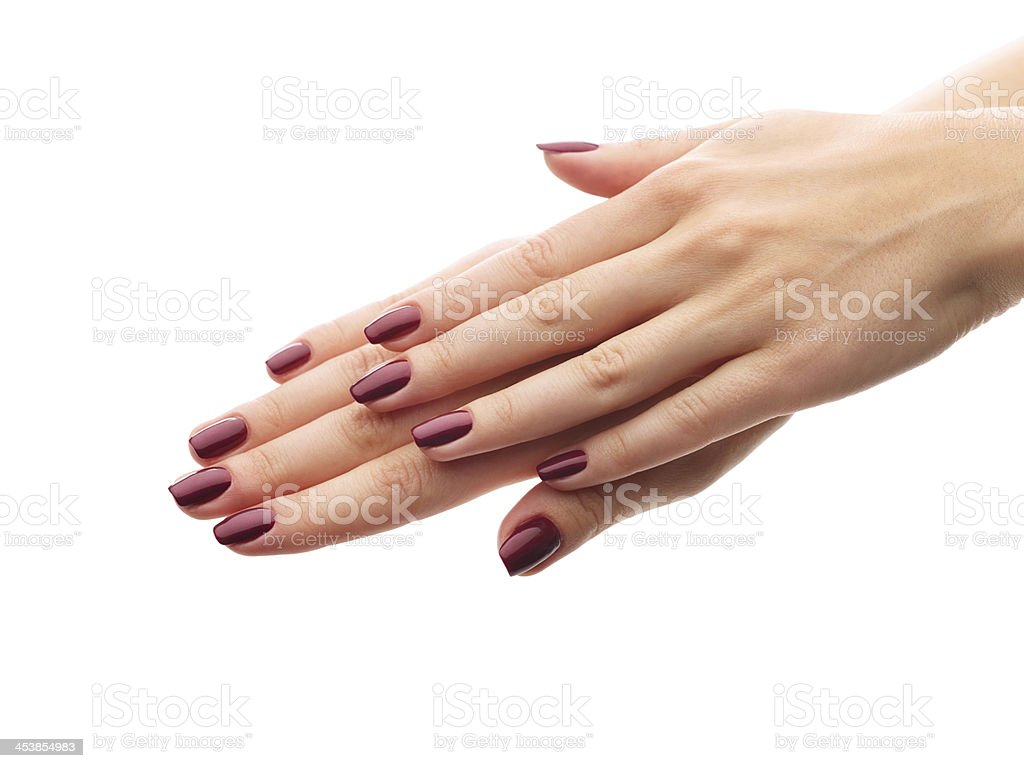 Classic well done burgundy manicure stock photo